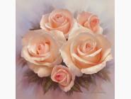 Цветы и букеты Нежные розы (ME20191)