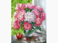 Бело-розовые пионы