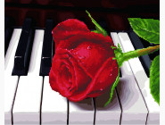 Роза и пианино