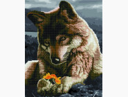 Волк и цветок