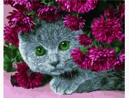 Кот в цветах