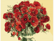 Цветы, натюрморты, букеты Красные маки
