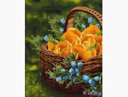 Цветы, натюрморты, букеты Солнце в корзине