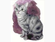 картина по номерам без коробки Маленький котенок