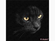 Коты и собаки: картины без коробки Взгляд хищника. Сергей Полушко