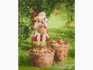 Дети, ангелочки, феи: картины без коробки Яблочки