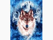 Животные и рыбки Волки