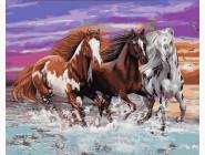Животные и рыбки Дикие лошади
