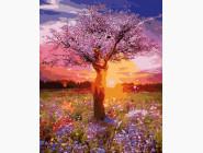 Пейзаж и природа Мать-природа