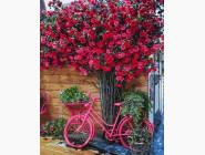 Цветы, натюрморты, букеты Велосипед на цветочном фоне