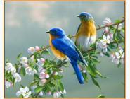 Птички на яблоне