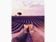 Пейзаж и природа Лавандовое поле Валенсоль с бокалами