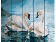 Птицы и бабочки картины по номерам Лебединая верность