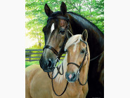 Новинки алмазной вышивки Лошади