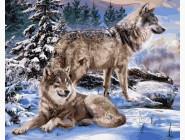 Новинки алмазной вышивки Пара волков