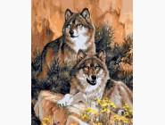 Новинки алмазной вышивки Волки