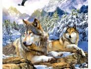 Новинки алмазной вышивки Верные волки