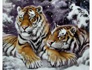 Новинки алмазной вышивки Пара тигров в снегу
