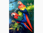 Новинки алмазной вышивки Яркая пара попугаев