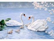 Новинки алмазной вышивки Лебеди на пруду