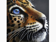 Новинки алмазной вышивки Взгляд хищника