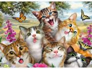 Новинки алмазной вышивки Добрые коты