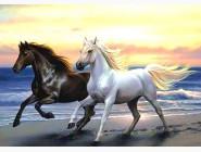 Новинки алмазной вышивки Лошади на берегу
