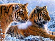 Новинки алмазной вышивки Тигры в зимнем лесу