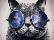 Новинки алмазной вышивки Кот в очках