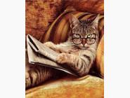 Новинки алмазной вышивки Кот учёный