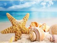 Новинки алмазной вышивки Пляж и ракушки