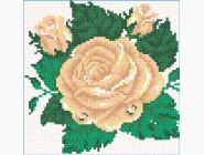 Цветы и букеты Бутон розы
