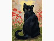 Коты и собаки Черная кошка в маках
