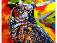 Птицы и бабочки картины по номерам Радужная сова