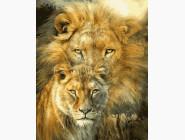 Животные и рыбки Лев и львица