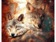 Животные и рыбки Волк с волчицей