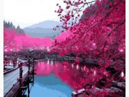 Пейзаж и природа Сакура возле озера