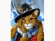 Коты и собаки Кот-исследователь