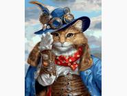 Коты и собаки Кот-пират