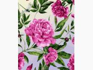 Цветы, натюрморты, букеты Пионовые фантазии