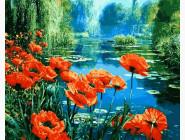 Цветы, натюрморты, букеты Маки