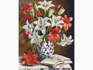 Красно-белые лилии