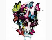 Цветной череп