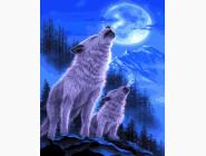 BK-GX21637 Картина по номерам Волки под луной (Без коробки)