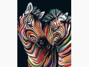 Радужные зебры