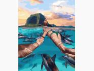 Следуй за мной Остров Маврикий
