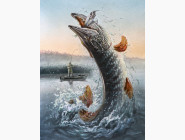 Рыбалка и охота Щука