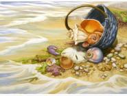 Морские пейзажи Корзина ракушек
