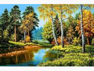 Природа и пейзажи Осень в лесу