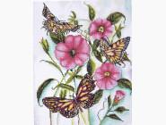 НикиТошка Прекрасные бабочки